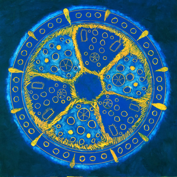 blue and orange painting of a diatom