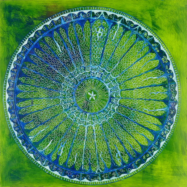 spider's web diatom painting in yellowish green and blue