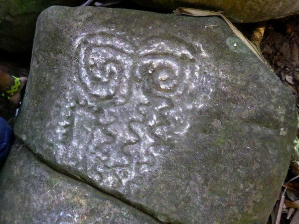 petroglyph on rock in jungle, squiggly lines with spiral on top