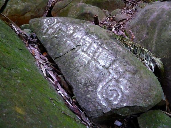 odd shaped petroglyph resembling a lizard
