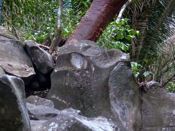 petroglyphs of spirals and other hints of lines and circles on rocks in jungle