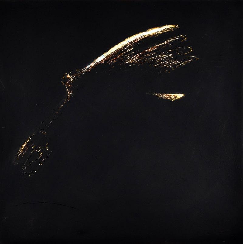 Night Bird by JAO