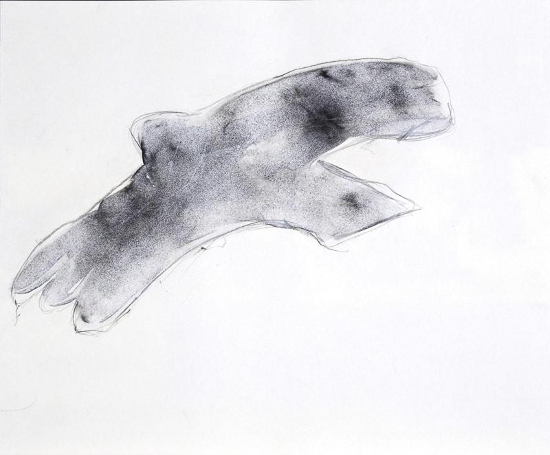 Smoke Bird by JAO